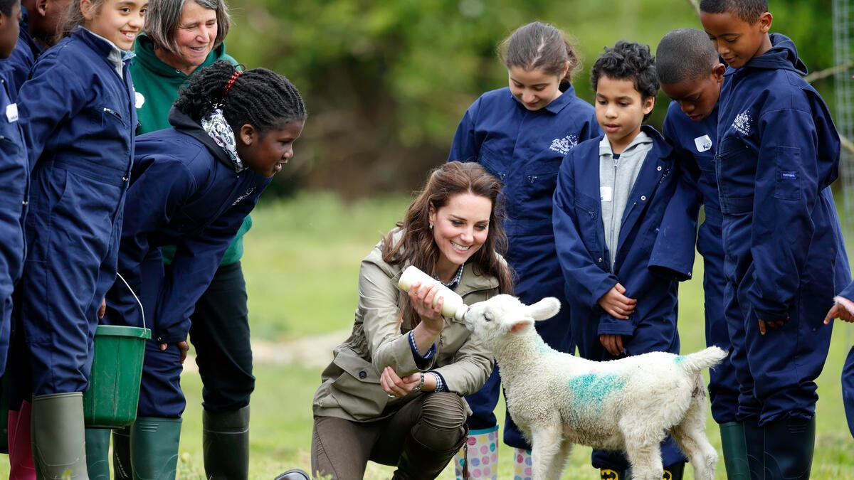 ARLINGHAM, UNITED KINGDOM - MAY 03: (EMBARGOED FOR PUBLICATION IN UK NEWSPAPERS UNTIL 48 HOURS AFTER CREATE DATE AND TIME) Catherine, Duchess of Cambridge bottle feeds 'Stinky' the lamb as she visits Farms for City Children on May 3, 2017 in Arlingham, England. Farms for City Children is a charity which offers children in the UK a chance to live and work on a real farm for a week. (Photo by Max Mumby/Indigo/Getty Images)