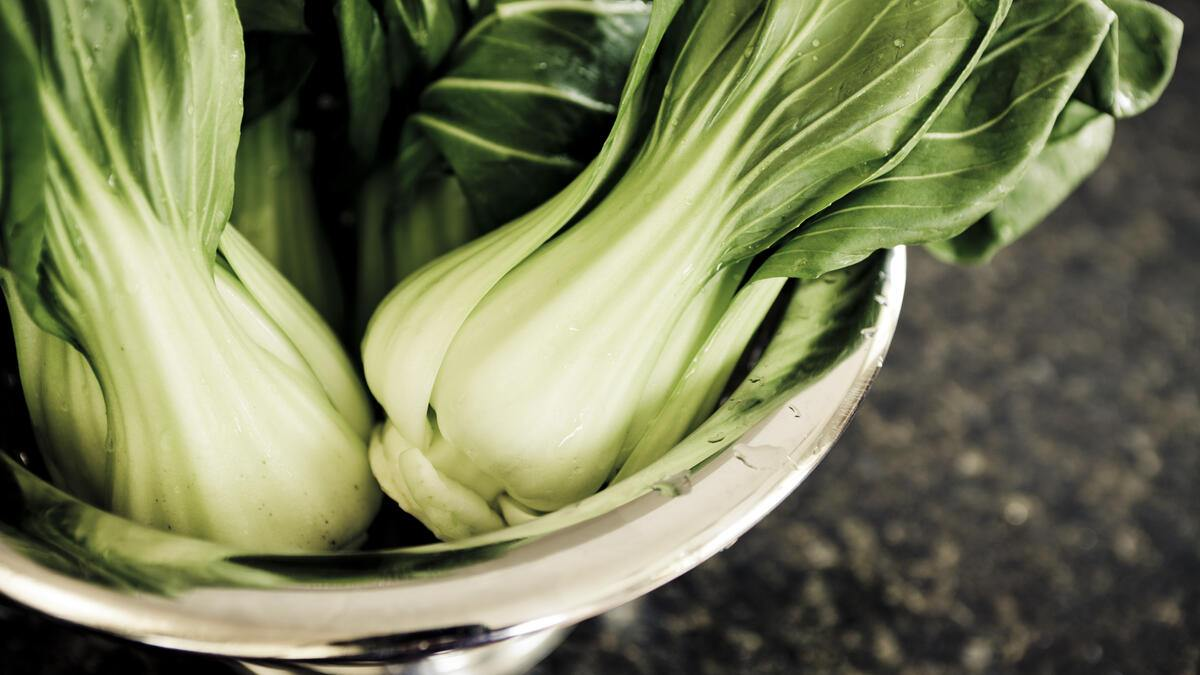 Fresh bok choy (chinese cabbage) in a collander.