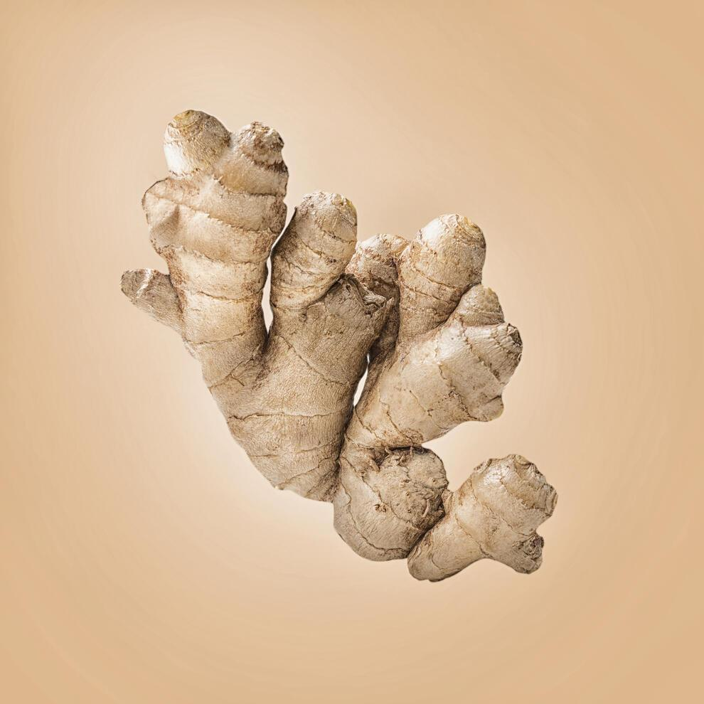 Healthy ginger root on light background. Substance with powerful medicinal properties.