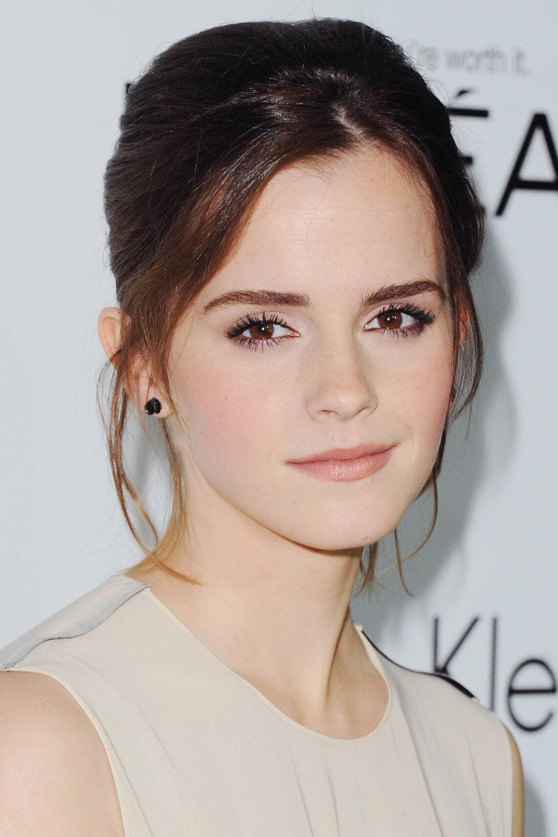 Fifty Shades of Grey Verfilmung E L James Bestseller Emma Watson Hauptrolle Constantin Leak